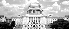 Capitol-Crop